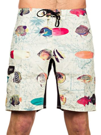 Reef Fish Chart Boardshorts