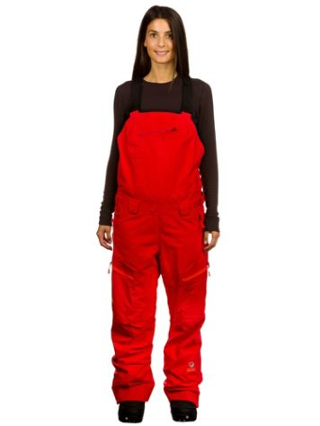 The North Face Free Thinker Regular Bib Pants