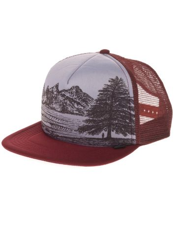 Hippy Tree Evergreen Cap
