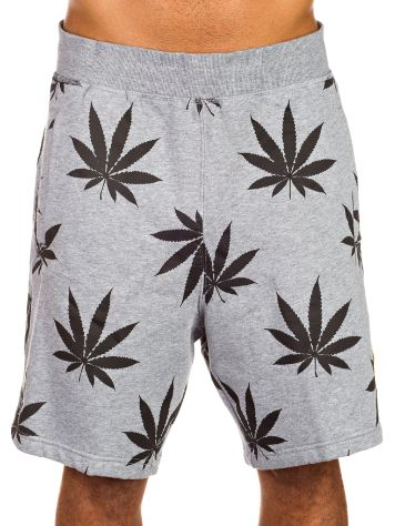 Cayler & Sons Best Budz Shorts