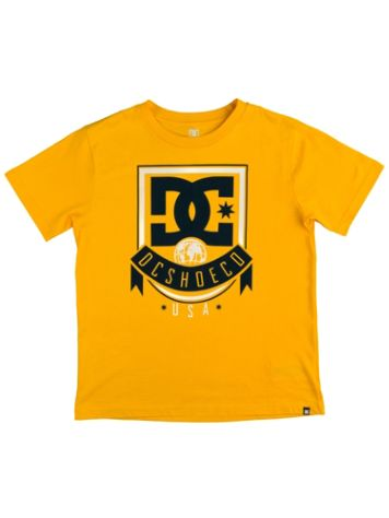 DC Royal Banner T-Shirt Chicos