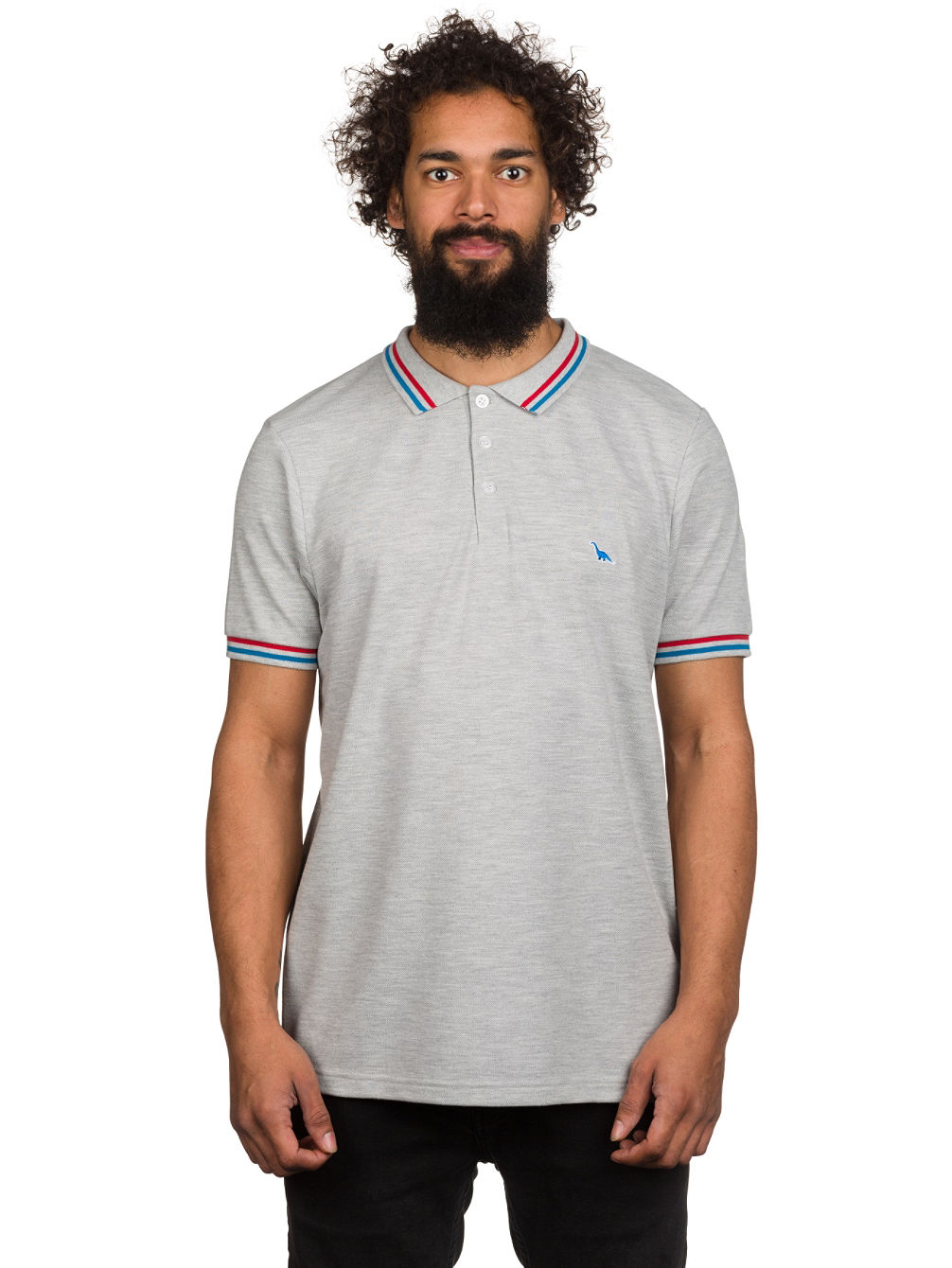 Buy Picture Denver Polo Online At Blue Tomato Com
