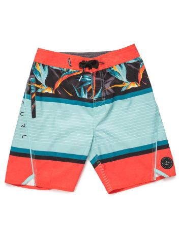 "Rip Curl Aggrohaven 17"" Boardshorts Boys"