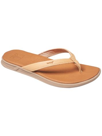 Reef Rover Catch LE Sandalen Frauen