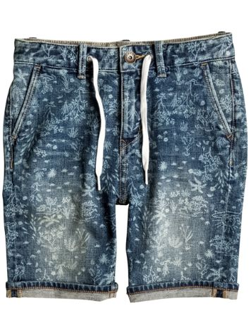 Quiksilver Bloom Field Aw Shorts Jungen
