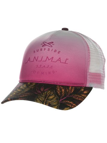 Animal Taliana Cap