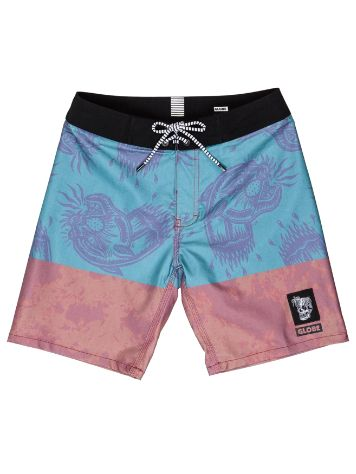 Globe Spray Boardshorts Jungen