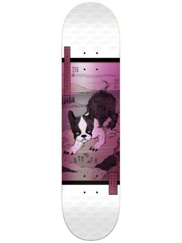 Real Wair Zodiac LTD 8.18'' Deck